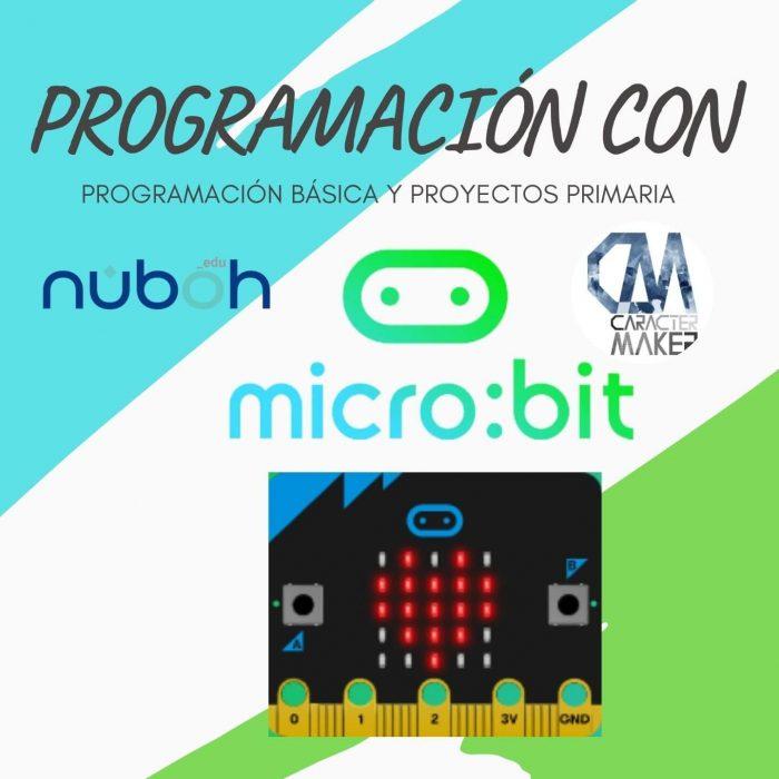 programación y proyectos con microbit